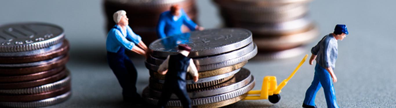 Micro/SME Scheme