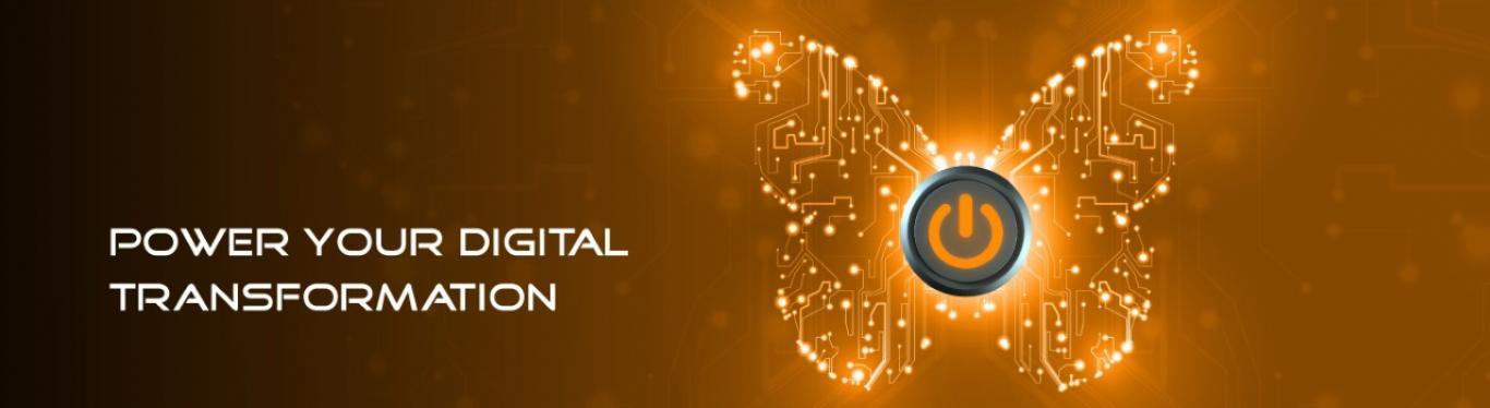 Digital Transformation Loan